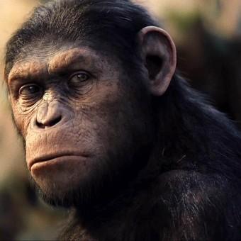 Planeta dos Macacos: A Origem – Crítica