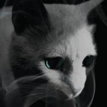 Dr. Sleep, sequência de O Iluminado, ganha capa interativa