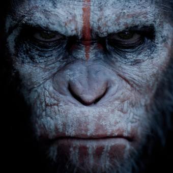 O terceiro Planeta do Macacos já tem data de estreia