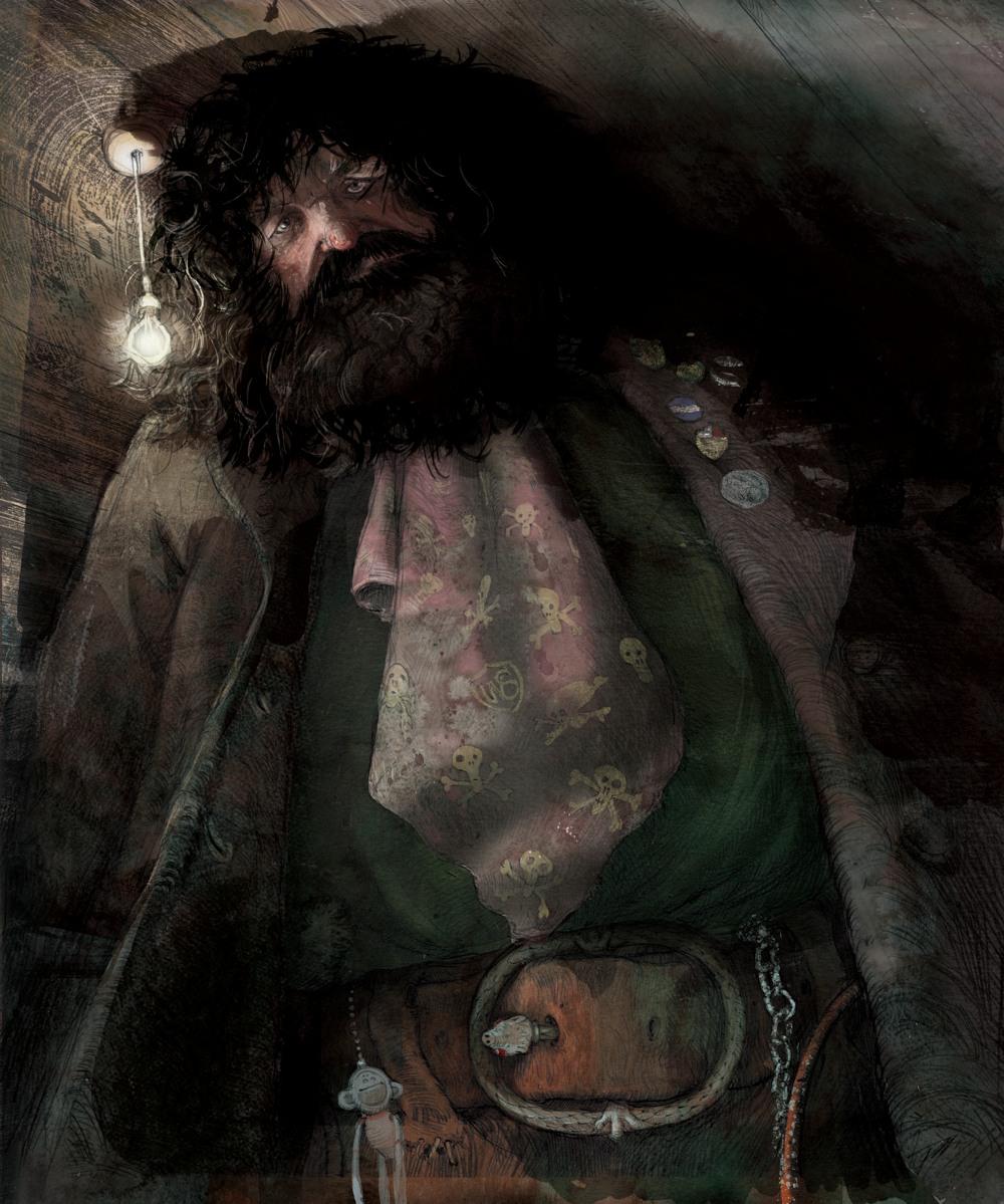 harry potter ilustrado 01