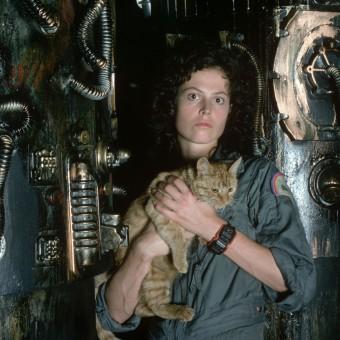 Sigourney Weaver comenta sobre possível novo Alien, com diretor de Distrito 9