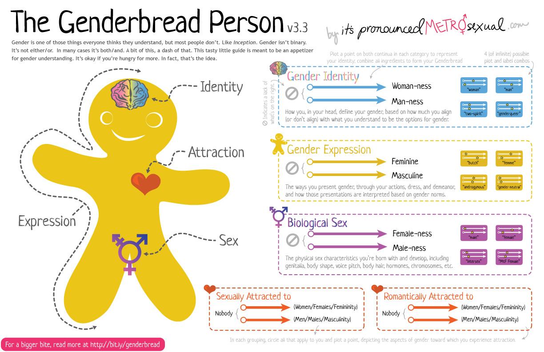 genderbread-person-3-3