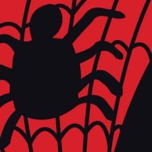 Homem-Aranha 50 Anos