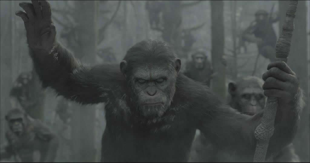 Cesar Planeta dos Macacos O despertar