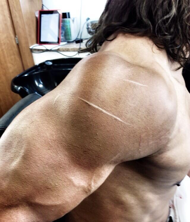 Hercules The ROck 04