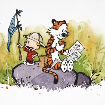 Criador de Calvin & Haroldo secretamente volta a publicar tirinhas nos EUA